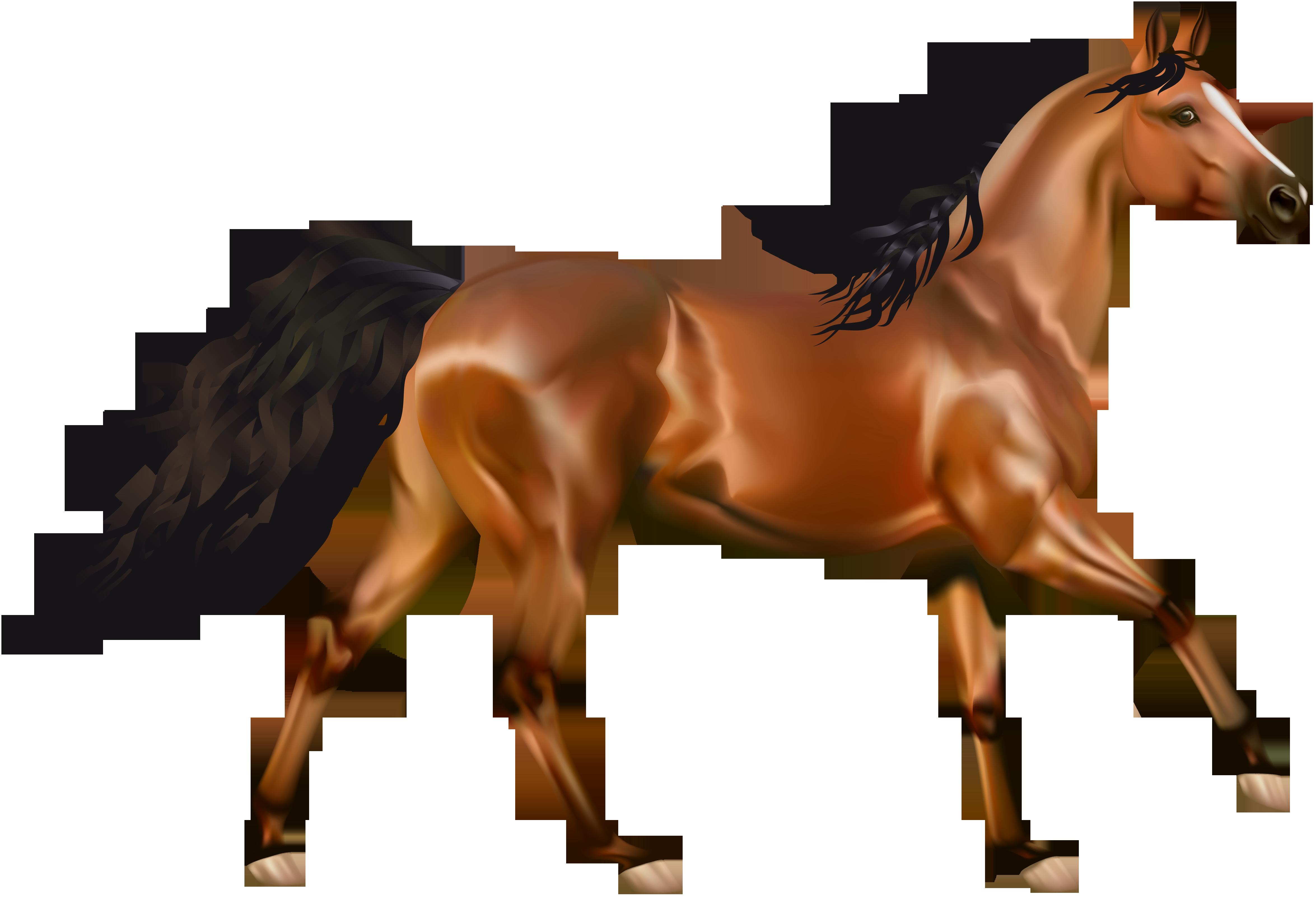 Clip Art White Horse