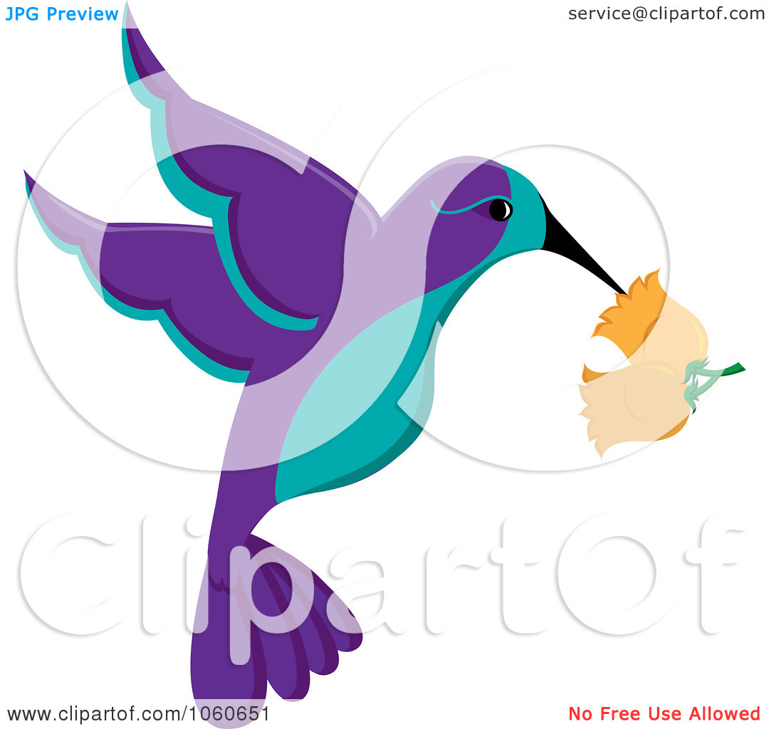 Purple And Turquoise Hummingbird With Trumpet Flowers By Pams Clipart