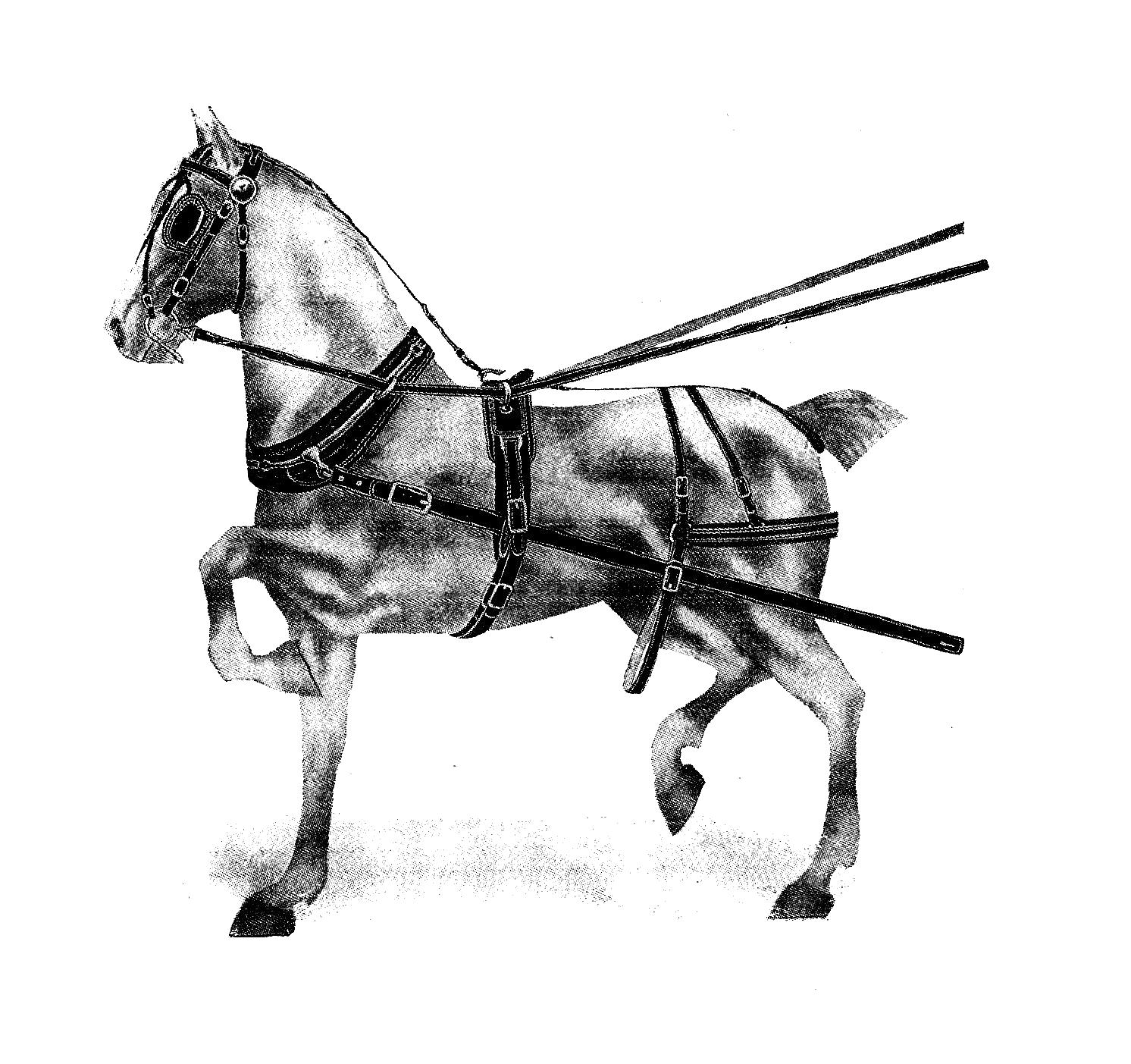 horse bit clipart - photo #50