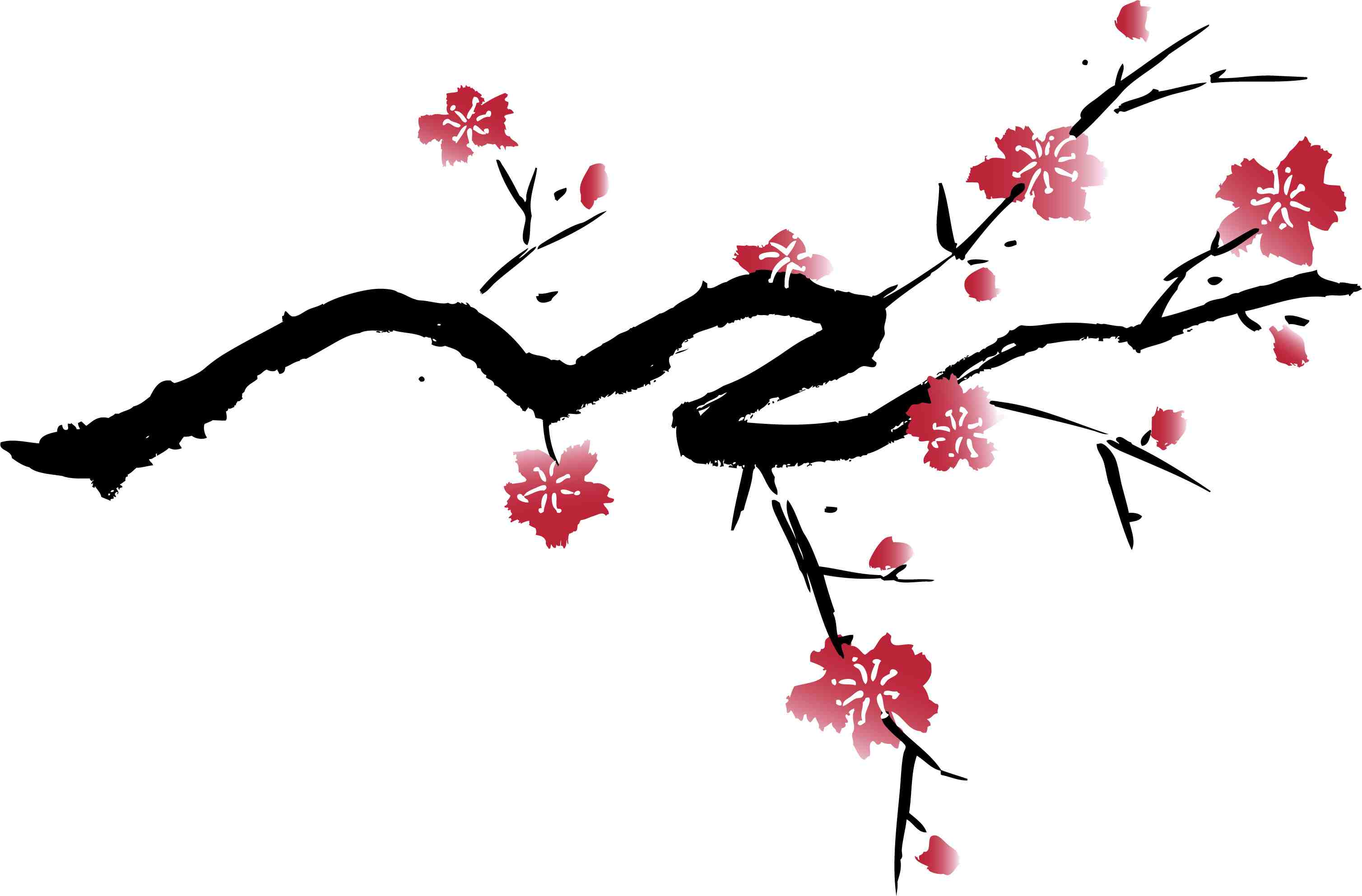 There Is 20 Cherry Blossom Black And White   Free Cliparts All Used