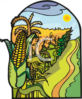 Find Clipart Corn Clipart Image 1 Of 16