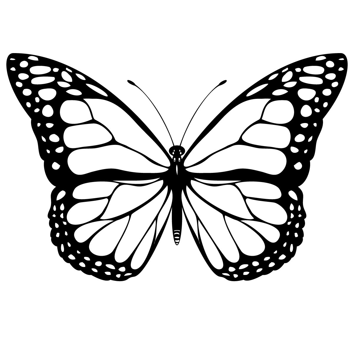 10 Cool Butterfly Drawings Free Cliparts That You Can Download To You