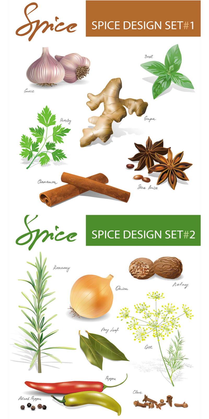 Back   Gallery For   Spice Bottle Clip Art