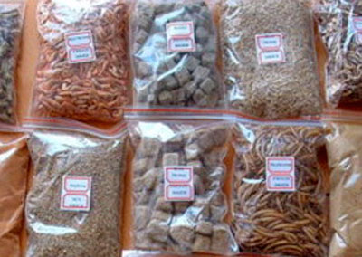 Freeze Dried Food Packages About Freeze Dried Food