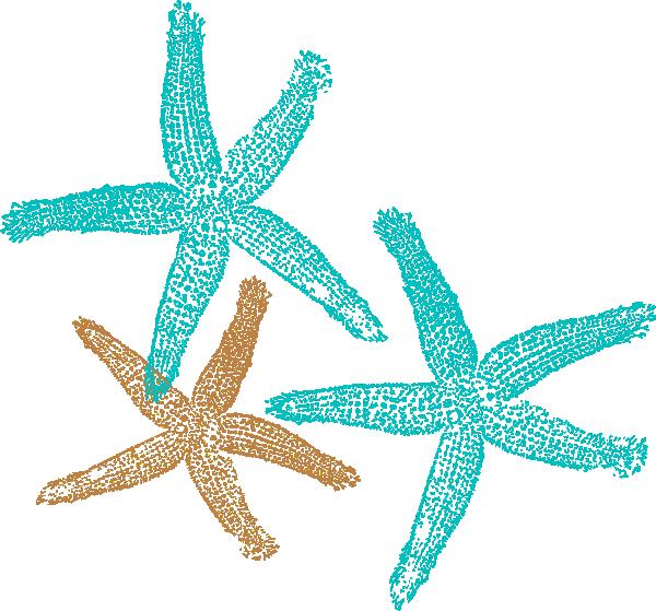 Starfish Outline Clip Art At Clker Com Vector Clip Art Online