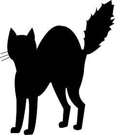 Cat Black And White Black Cat Cat Fizzed Tail Halloween Black Cat