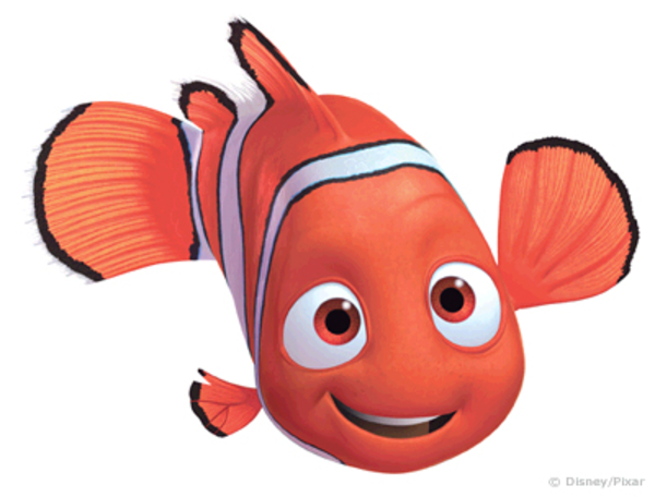 Nemo   Free Images At Clker Com   Vector Clip Art Online Royalty Free