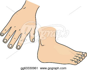 Illustration Of Hand And Foot Body Parts  Stock Clipart Gg63330961