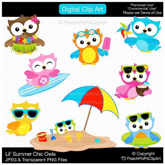 Unavailable Listing On Etsy: Summer Owl Clipart