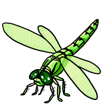 50 Free Dragonfly Clip Art 18