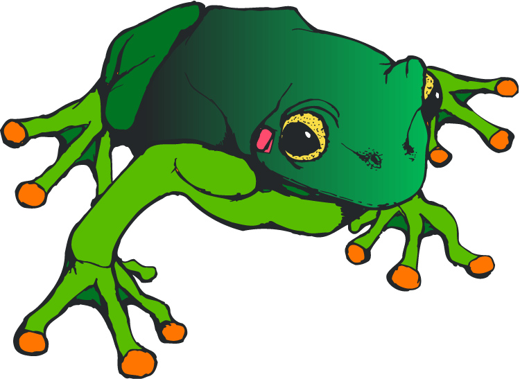 green frog clipart - photo #30
