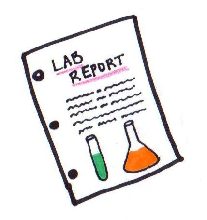 Lab Report   Flickr   Photo Sharing