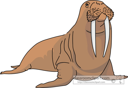 walrus clipart clipart suggest walrus clip art black and white walrus clipart cute