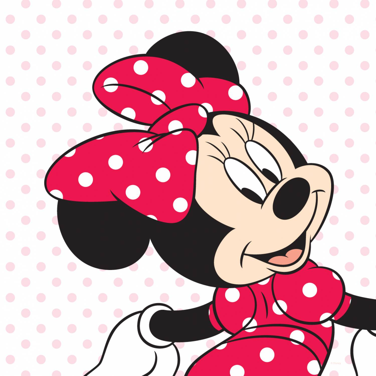 Minnie Mouse 1st Birthday Clip Art   Clipart Panda   Free Clipart