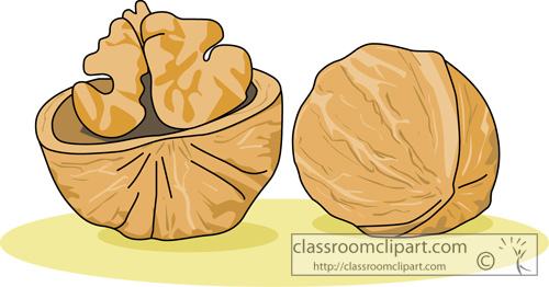 Objects   Whole Walnut   Classroom Clipart
