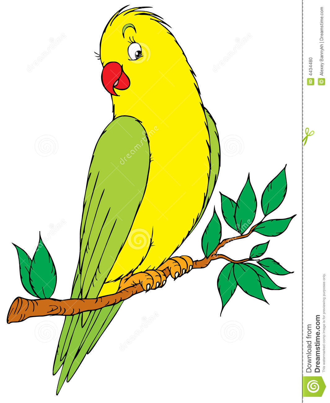 Parrot Black And White Clipart - Clipart Suggest