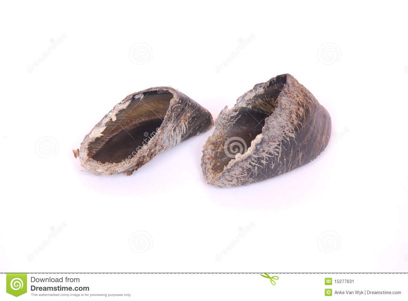 Cow Hooves   Dog Treats Stock Image   Image  15277631