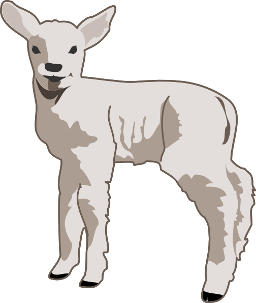 Clip Art Lamb Clip Art baby sheep clipart kid free to use public domain clip art