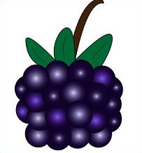 Blackberry Clipart