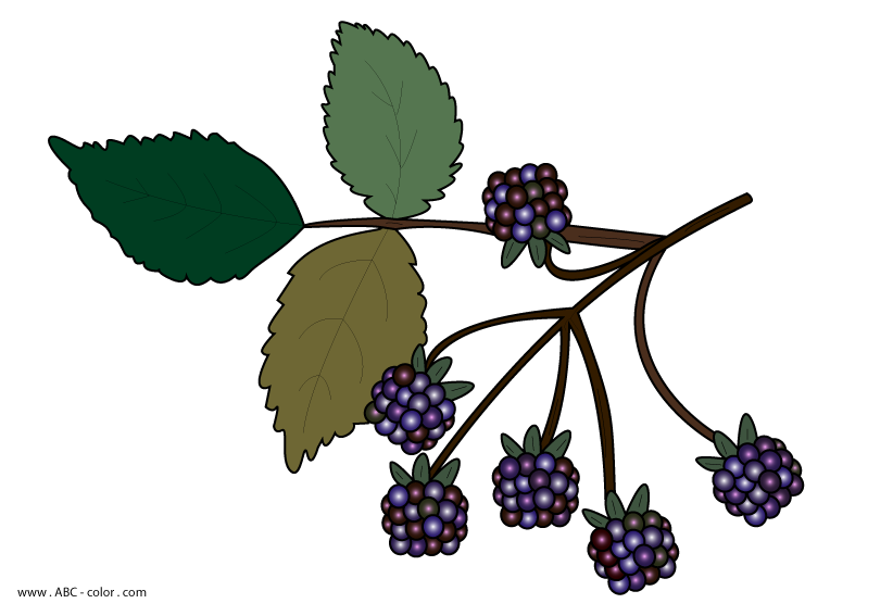 clipart for blackberry phone - photo #29
