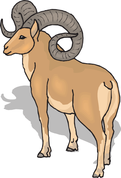 Bighorn Sheep Rear View Clip Art