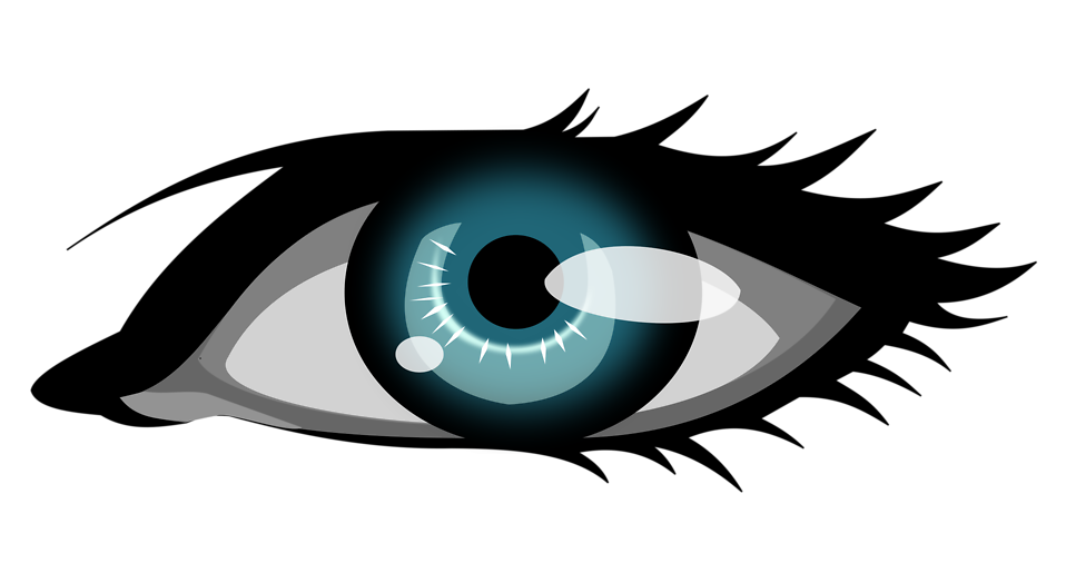 Illustration Of A Human Eye   Free Stock Photo
