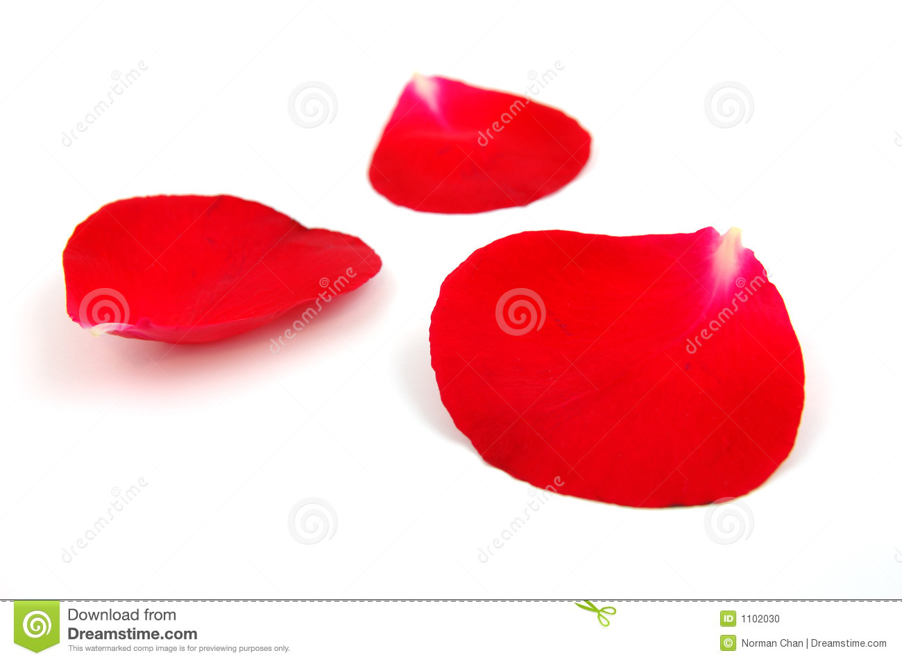 rose petal Where to buy: dried rose petals and rose water are available at  add the garlic  and rose petals, and pulse about 10 times to form a dry paste.