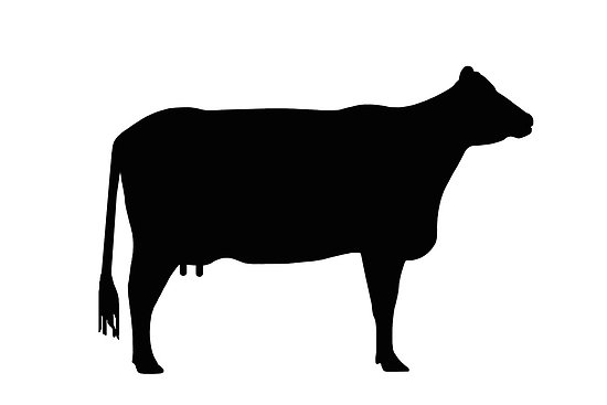 Beef Steer Clip Art   Clipart Panda   Free Clipart Images