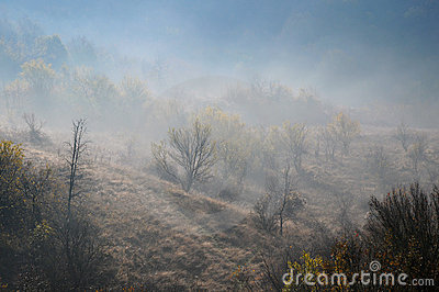 Foggy Hill Slope In The Late Fall Royalty Free Stock Photo   Image