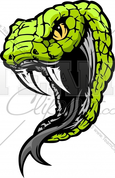 Mean Snake Head Vector Clipart Image   Team Clipart  Com   Quality