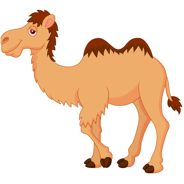 Cute Camel Clipart   Camel Images