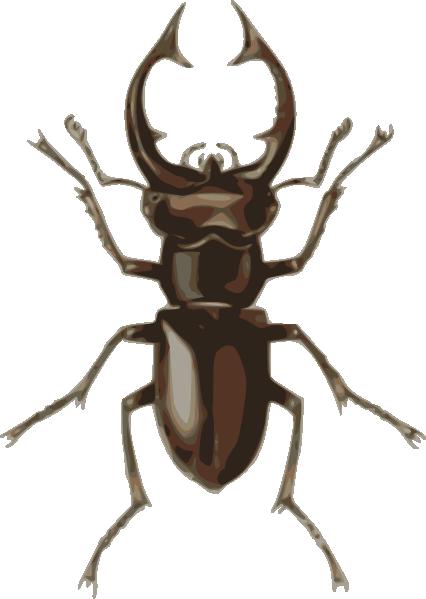 Beetle Clipart - Clipart Kid
