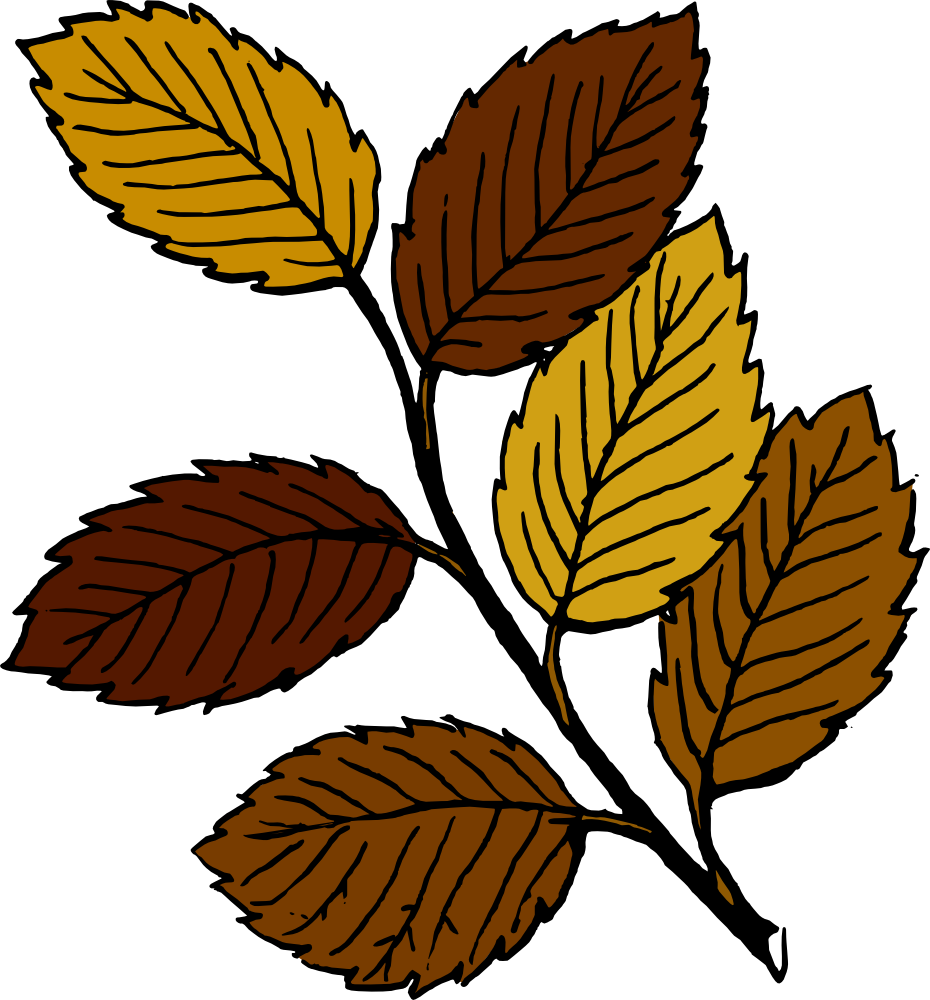 Onlinelabels Clip Art   Autumn Leaves On Branch