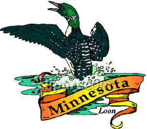 Of Minnesota The Loon With A Gold Banner Royalty Free Clipart Picture
