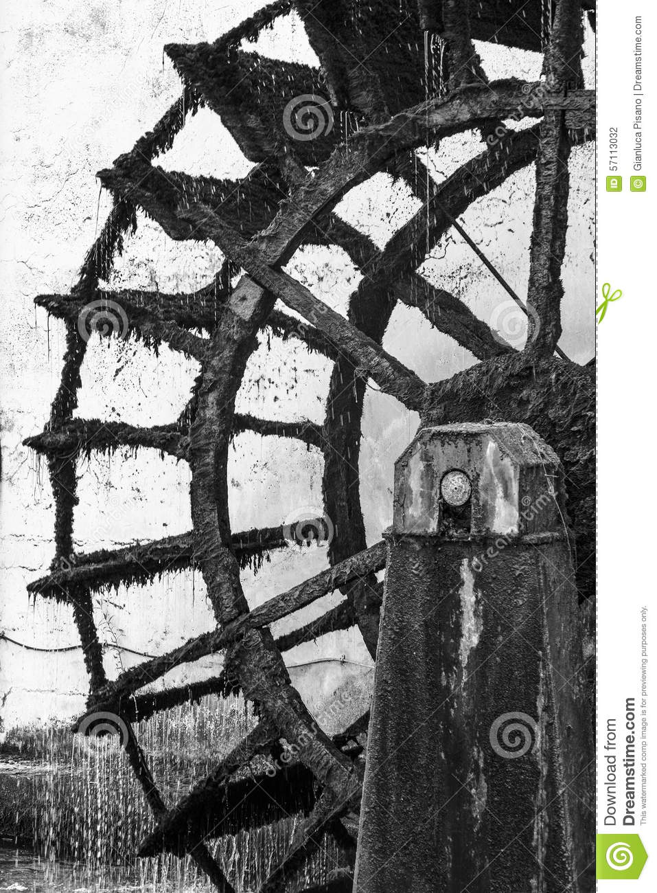 Mill Wheel In Black And White