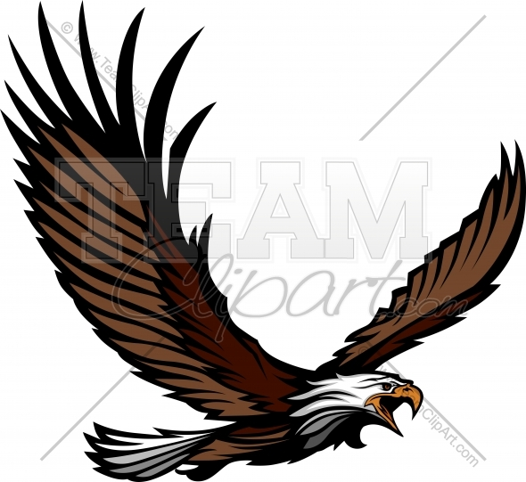 Eagle Mascot Flying With Wings Spread   Team Clipart  Com   Quality
