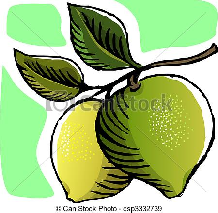 Guava In The Plant Csp3332739   Search Vector Clipart Drawings