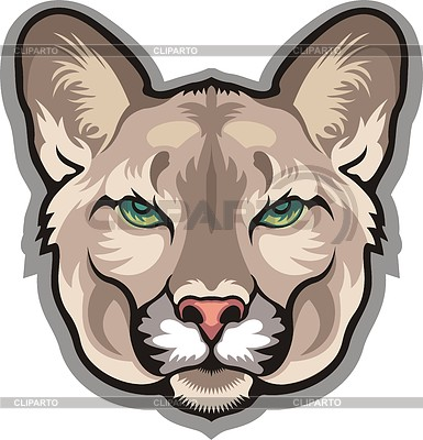 Pin Cute Cougar Clip Art Vector Online Royalty Free Cake On Pinterest