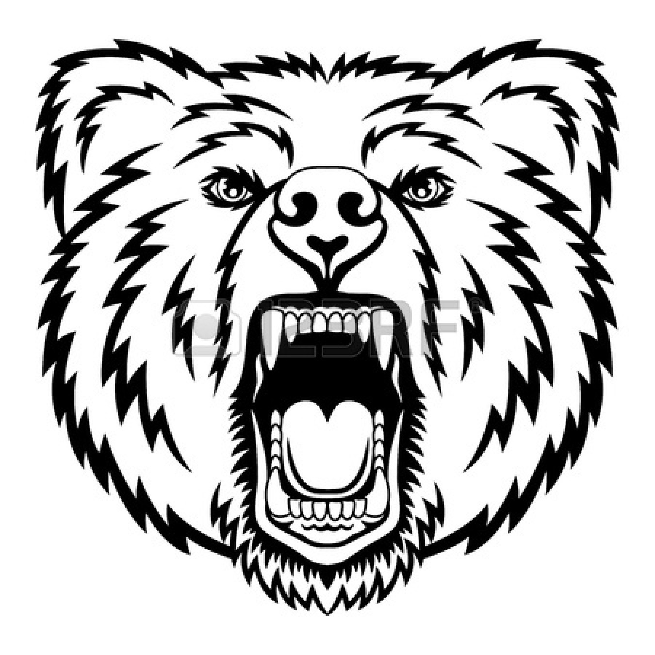Standing Grizzly Bear Drawings Realistic