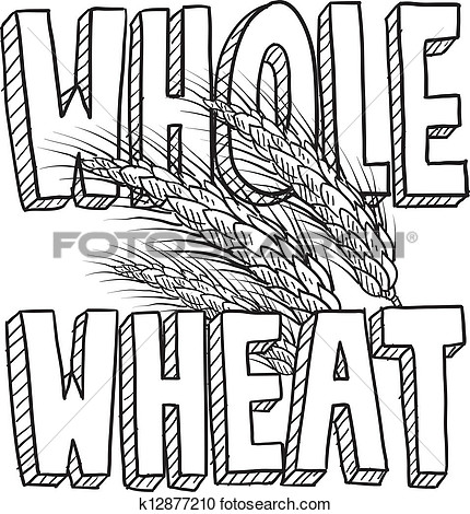 Whole Wheat Food Sketch View Large Clip Art Graphic