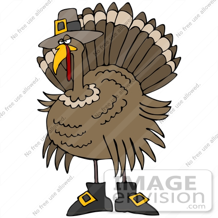 Clip Art Graphic Of A Thanksgiving Turkey Bird Disguised As A Pilgrim