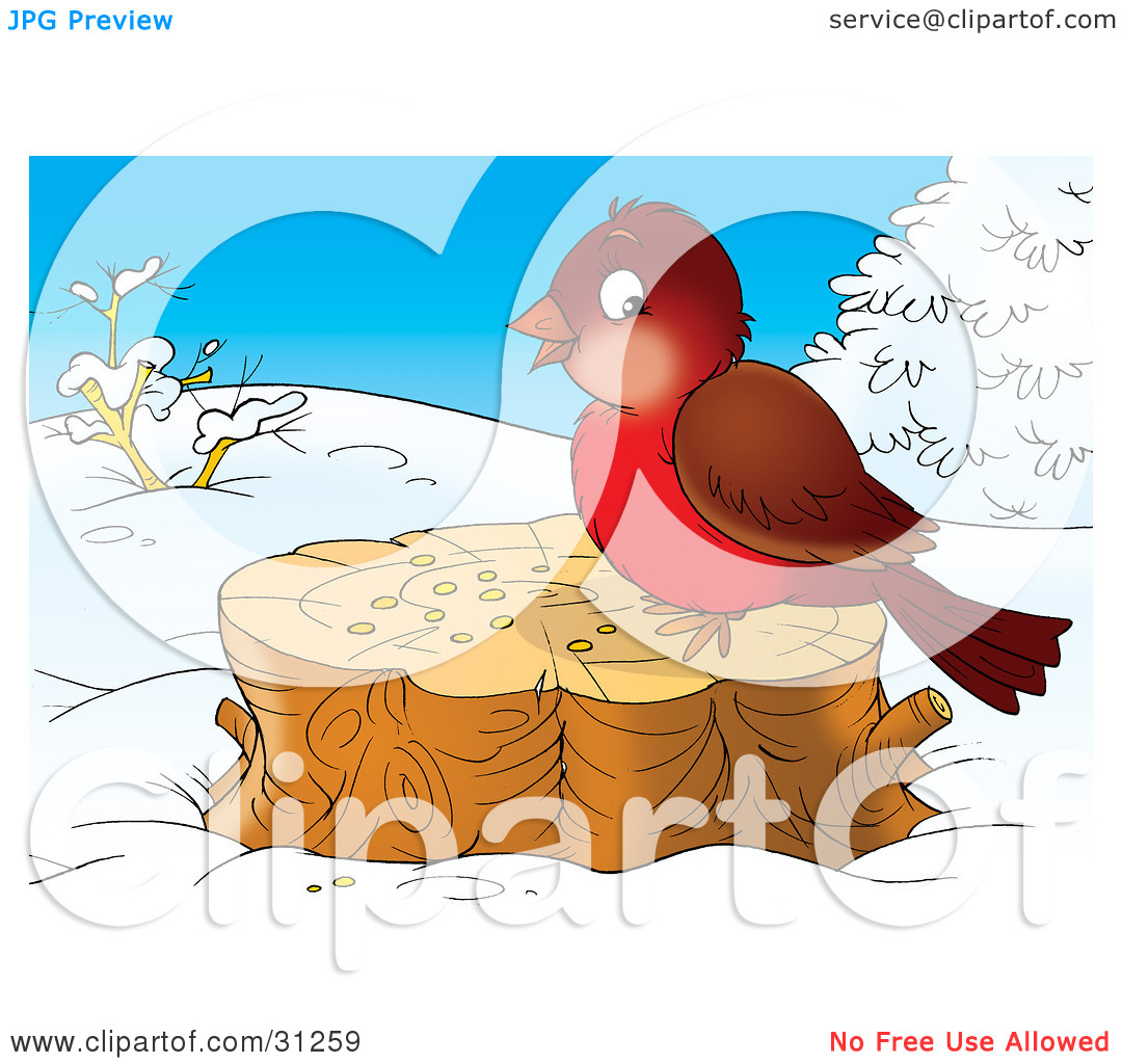 Clipart Illustration Of A Cute Brown And Robin Bird Eating Seed On A