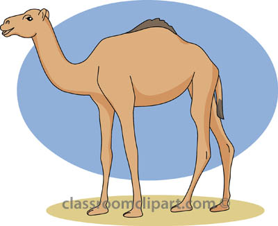 Animal Camel Clipart Graphic