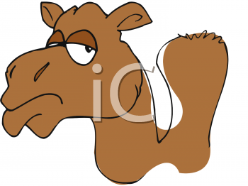 Funny Camel Cartoon Clip Art