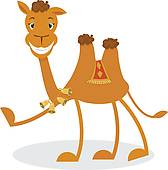 Funny Camel Cartoon Stock Illustrations   Gograph