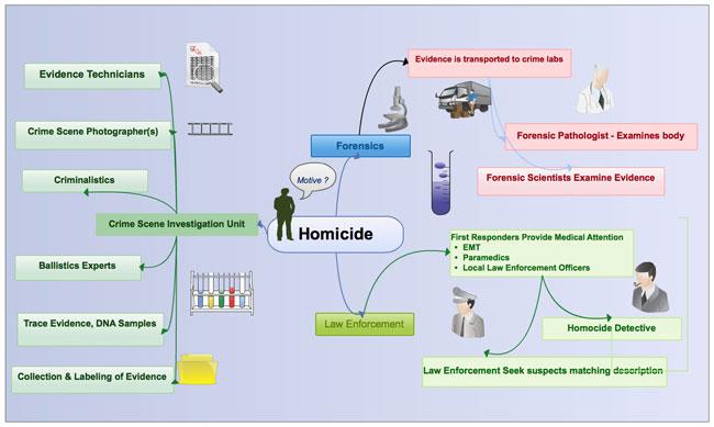 crime scene investigation report example pdf