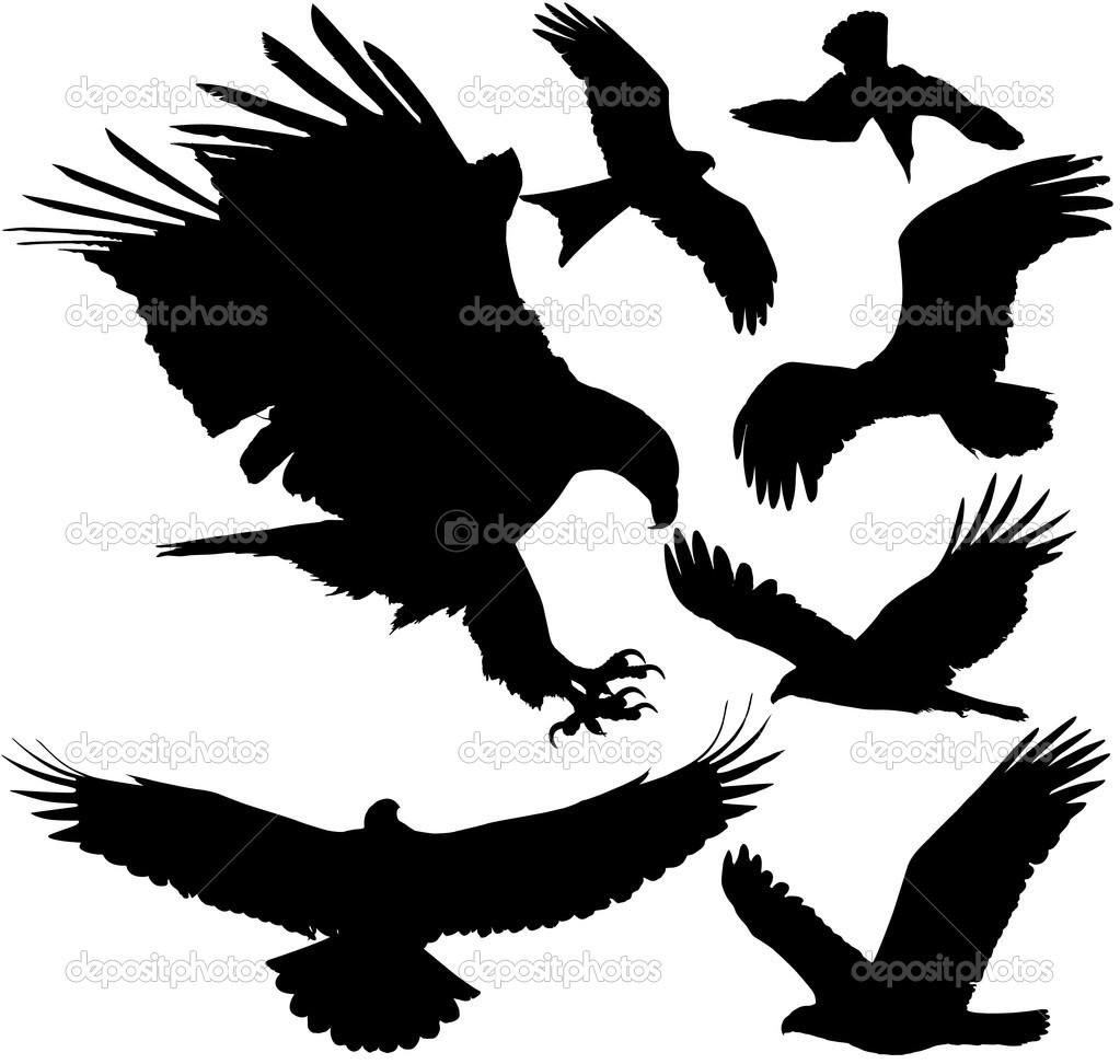 Falcon Claw Clipart - Clipart Kid