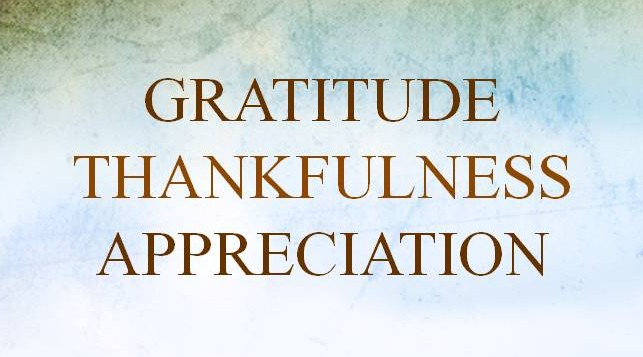 What are some words of appreciation for your pastor?