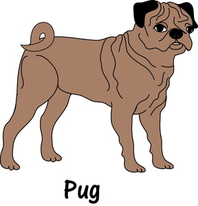 Pug Clip Art Images Pug Stock Photos   Clipart Pug Pictures