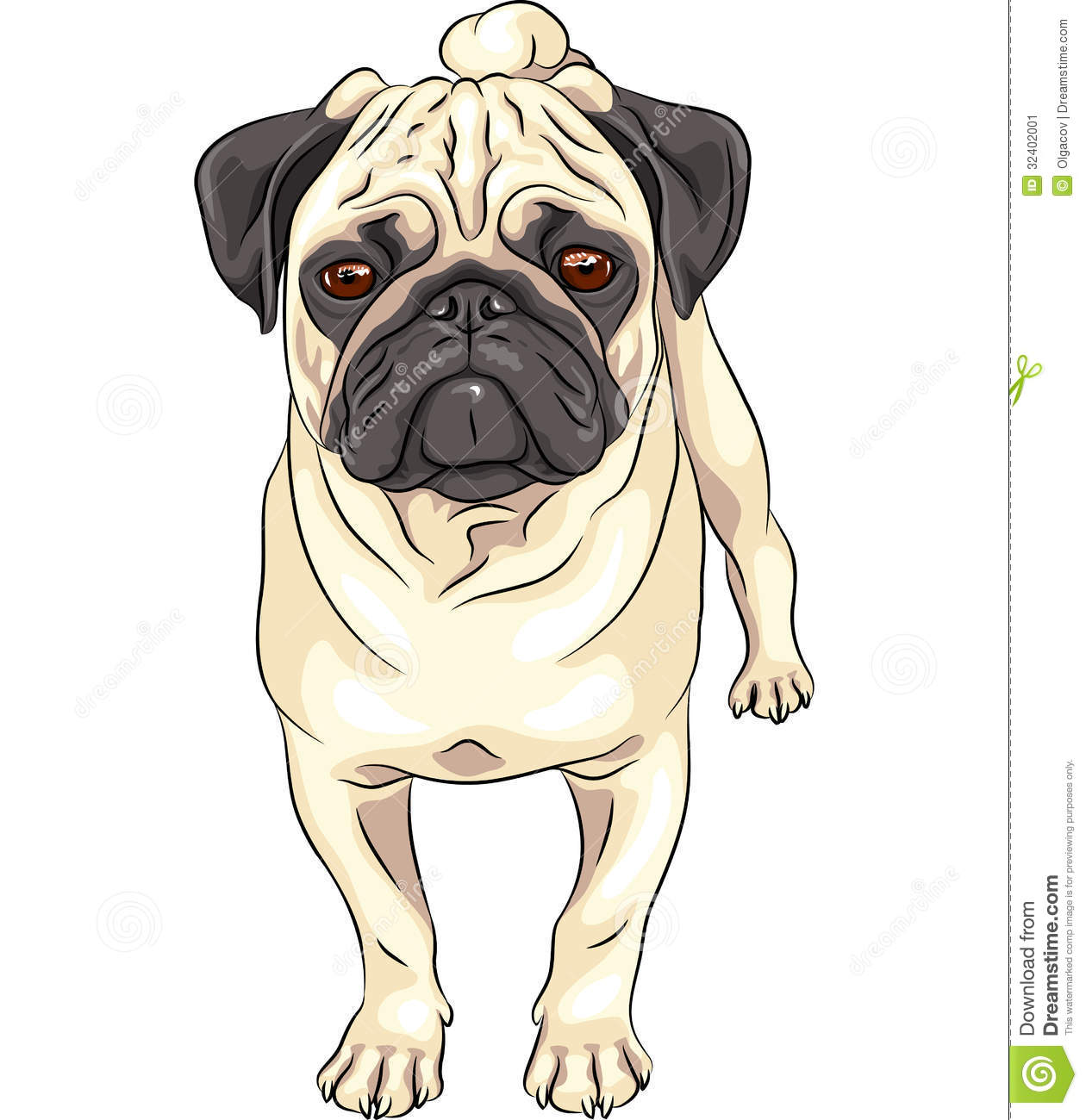 Vector Sketch Cute Dog Pug Breed Stock Image   Image  32402001